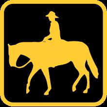 Călărie – cu cai islanezi